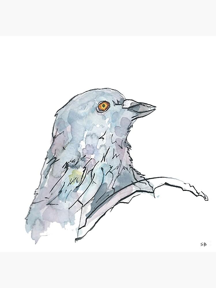 Pigeon by stevebeadleart