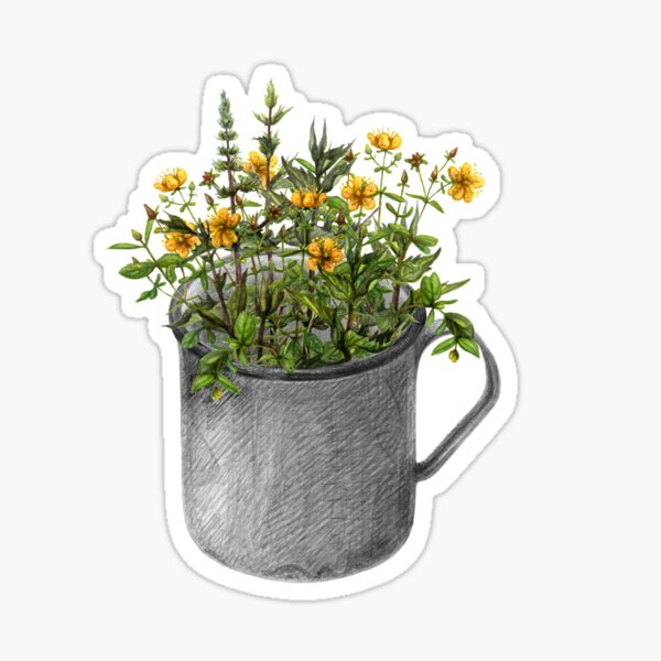 Mug with mint and hypericum flowers Sticker