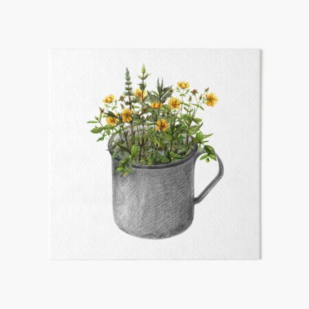 Mug with mint and hypericum flowers Art Board Print