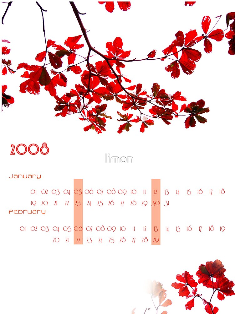Calender 2009 by limon