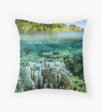 Indonesian Reef Throw Pillow