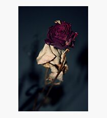 Aged Beauty Photographic Print