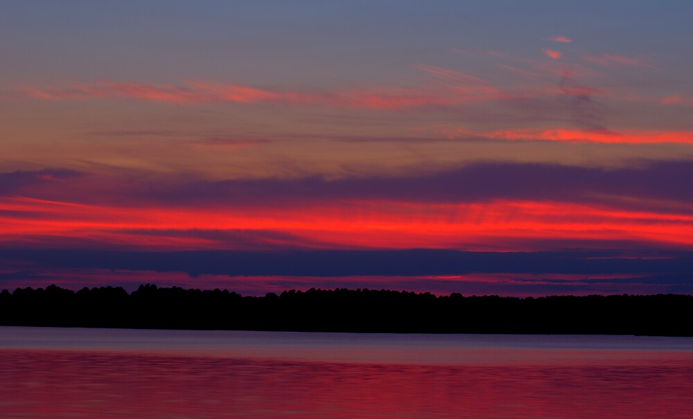 Sailor's Delight by L M