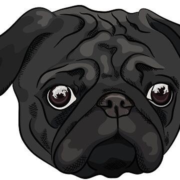 Cute black pug portrait by TorriPhoto