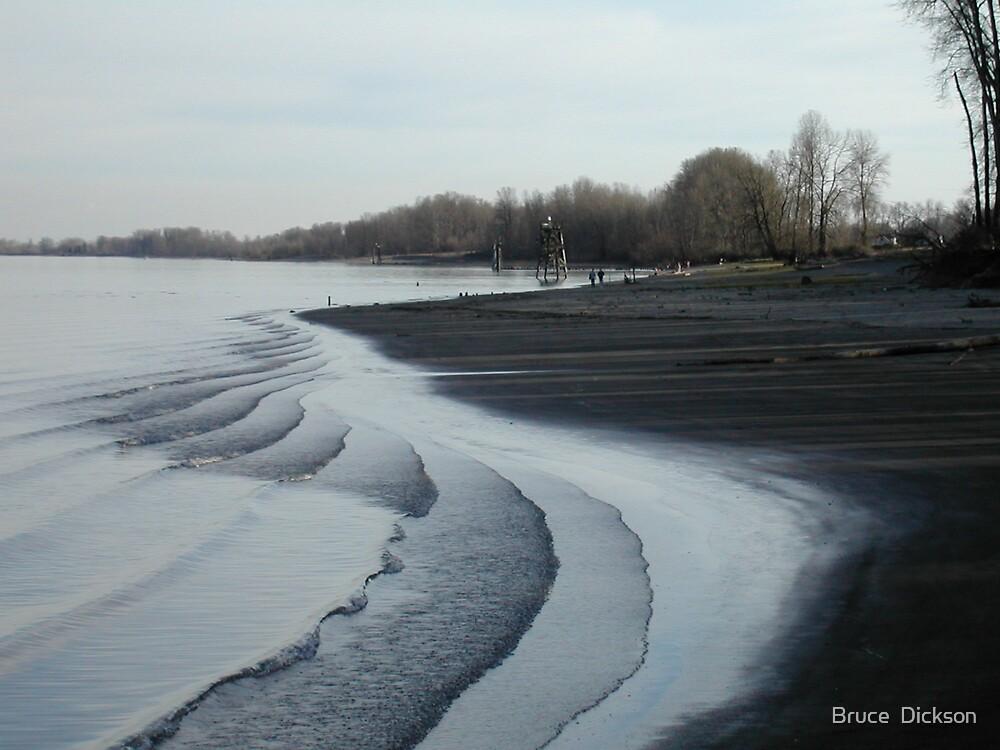 tidal ripples by Bruce  Dickson