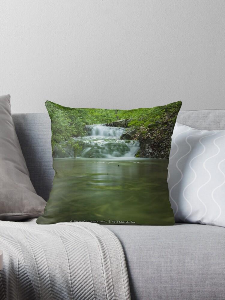 Small Stream & Waterfall by BLaskowsky