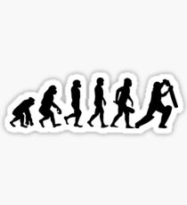 Evolution of Cricket Sticker