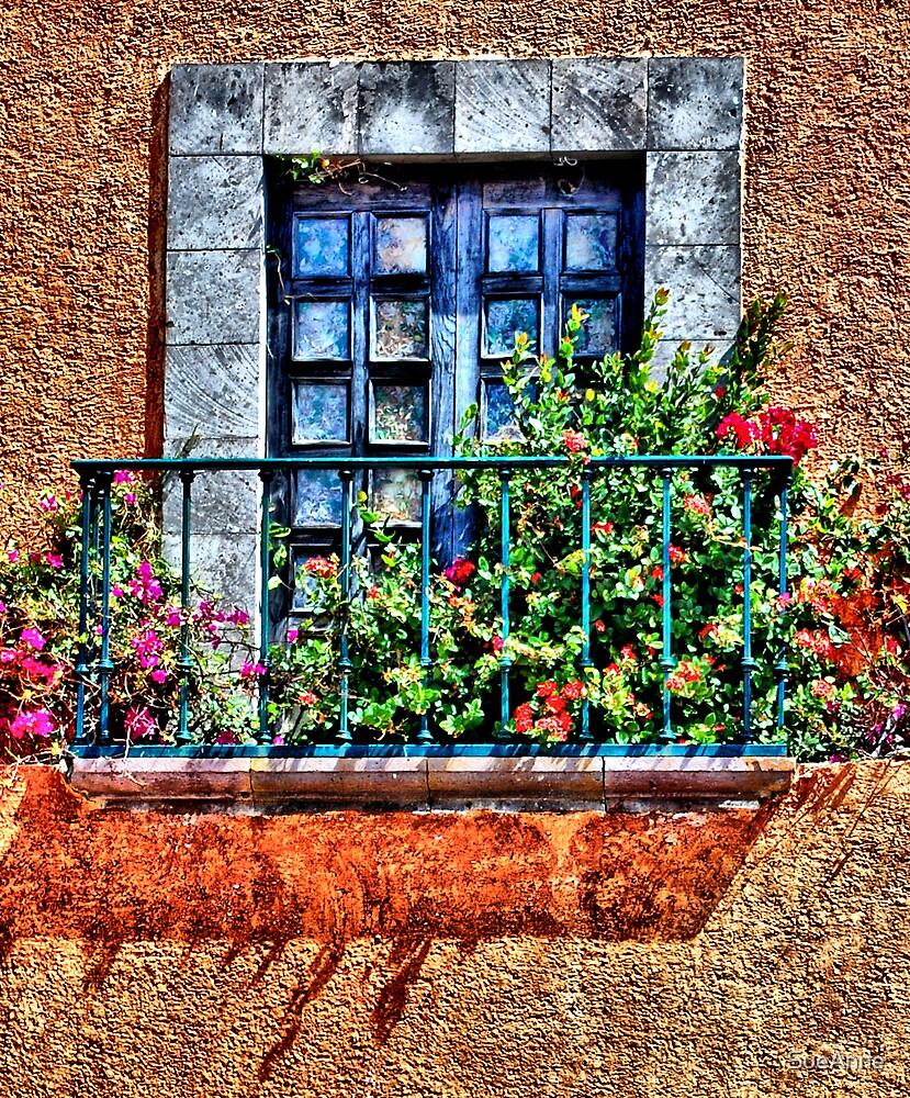 Mexican Window by SueAnne
