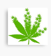 Cannabis from cannabis leaves  Canvas Print