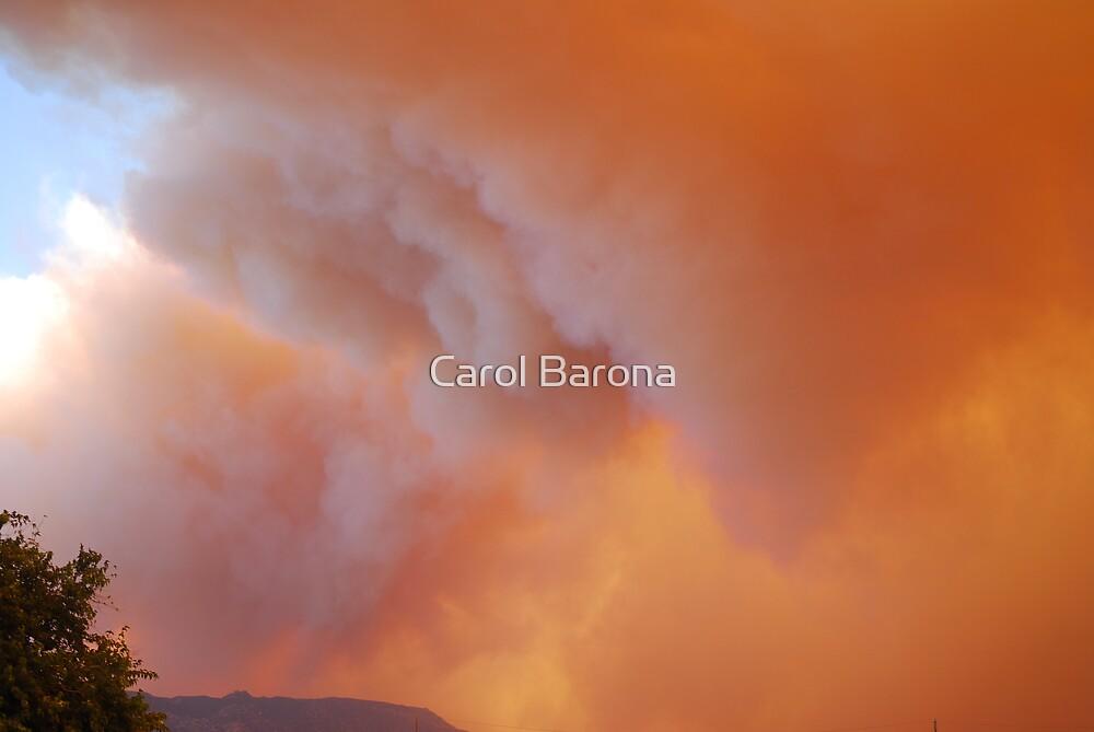 FIRE STORM by Carol Barona