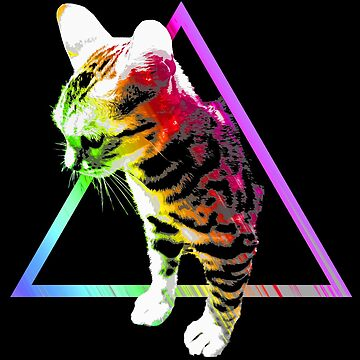 Rainbow Triangle Cat by robotface