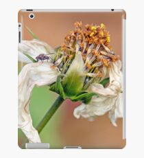 """Flower, white flower, fly, insect, macro, photo-macro. """"Destructured flower and little fly"""" iPad Case/Skin"""