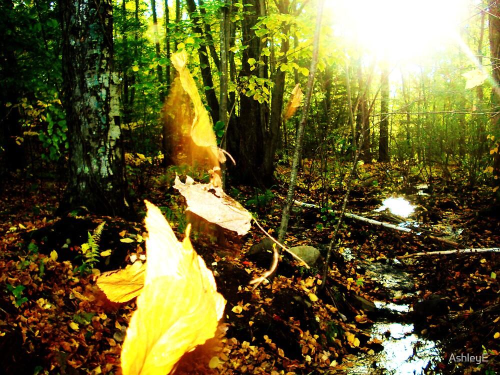 Fall by AshleyE