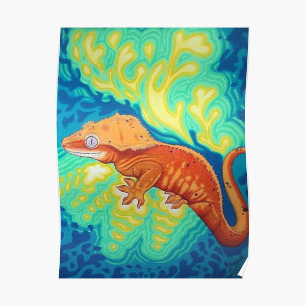 Red Crested Gecko Art  Poster