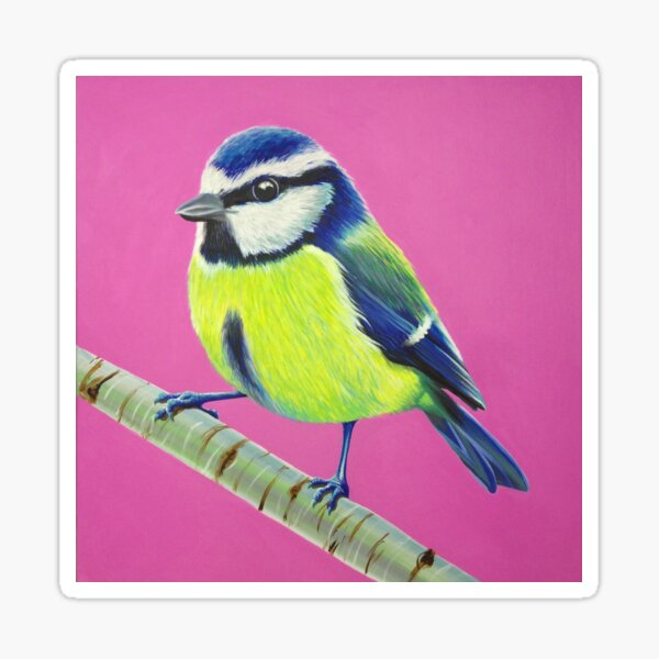 Blue Tit Sticker