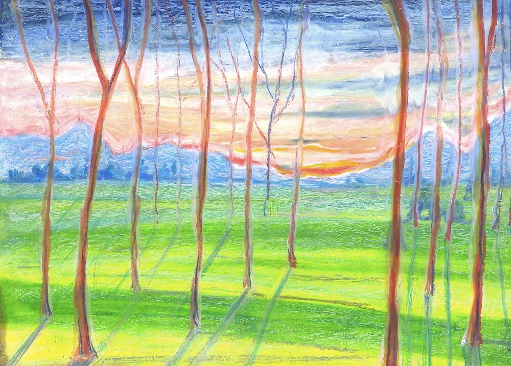 Saplings at Sunrise  by Beth Bailey