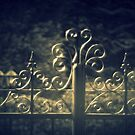 Iron Gate by SylviaHardy