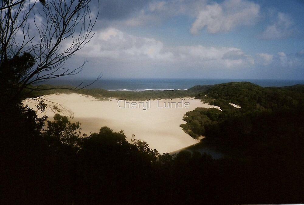 Windswept by Cheryl  Lunde