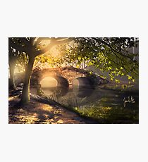 Stow Lake Photographic Print