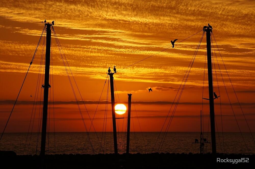 Birds On A Wire by Rocksygal52