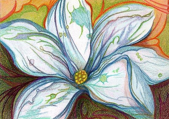 Magnolia White by acreativeperson