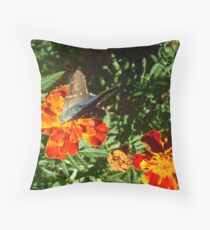 Farewell to Fall Throw Pillow