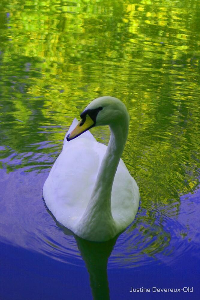 Swan lake by Justine Devereux-Old