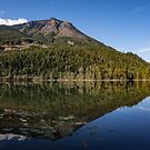 Reflection at Griffin Lake by Steve Boyko