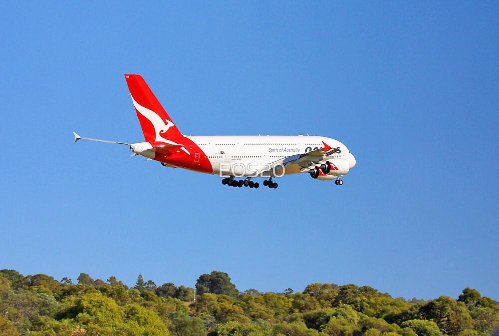 Qantas A380 - Landing  by EOS20