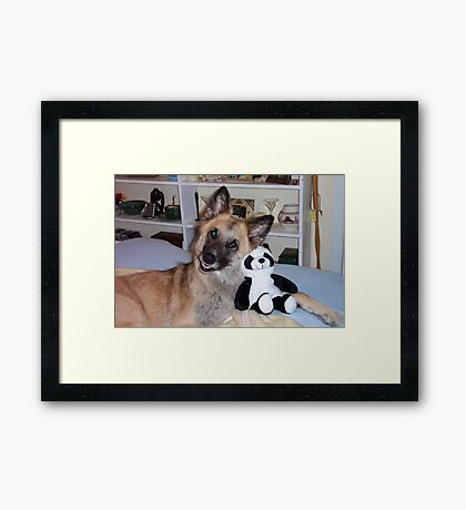 Cody and his Pal the Panda Framed Print