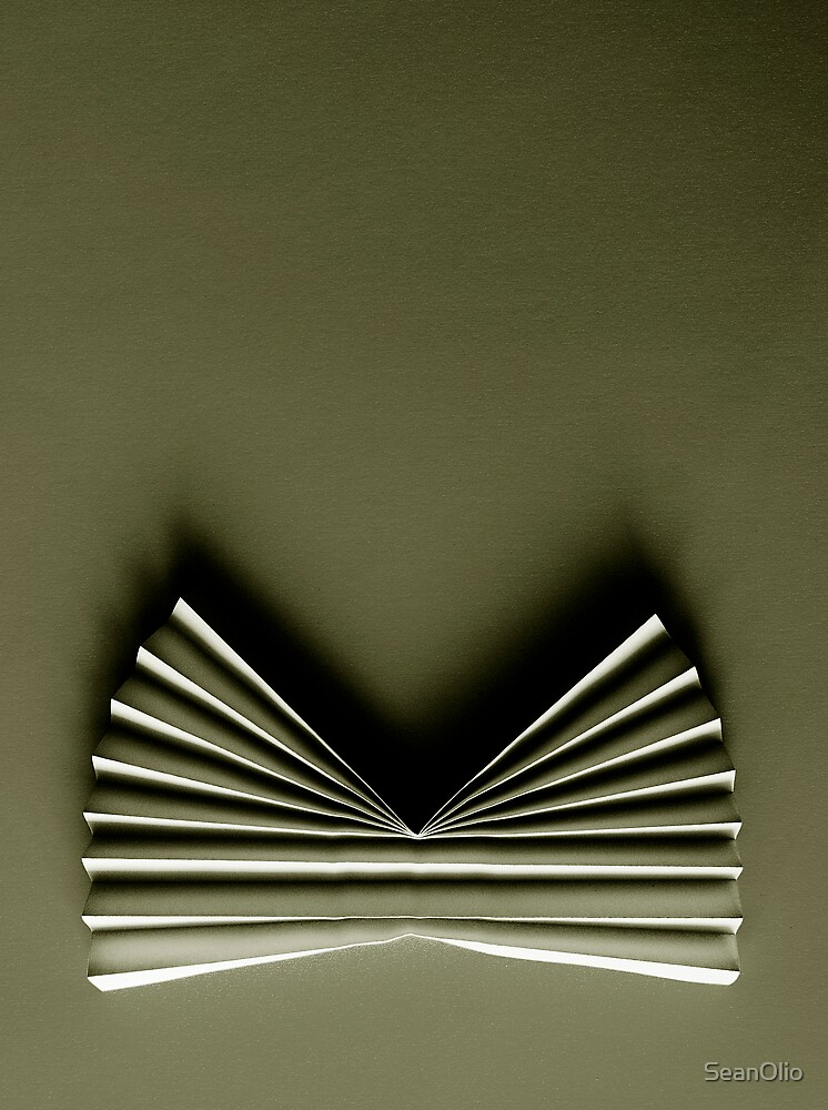 Untitled by SeanOlio