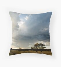 Skyworks Throw Pillow