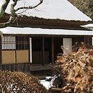 Japan - Snow house by fab2can