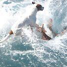 the BIG splash !!! by Aaron Barbara