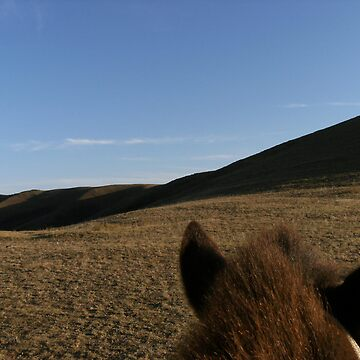 Horse eye view of Mongolia by mantahay