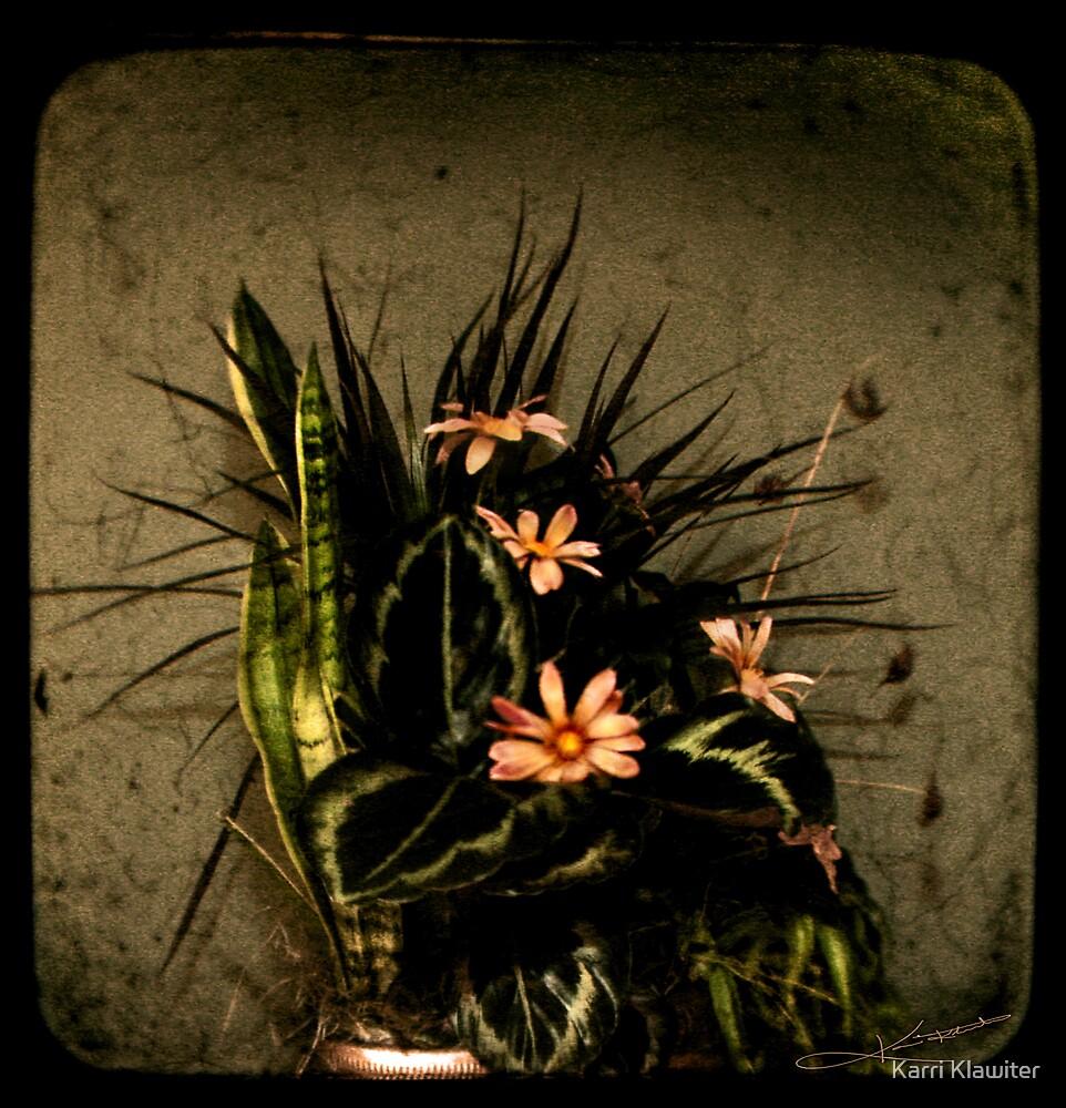 Remembrance by Karri Klawiter