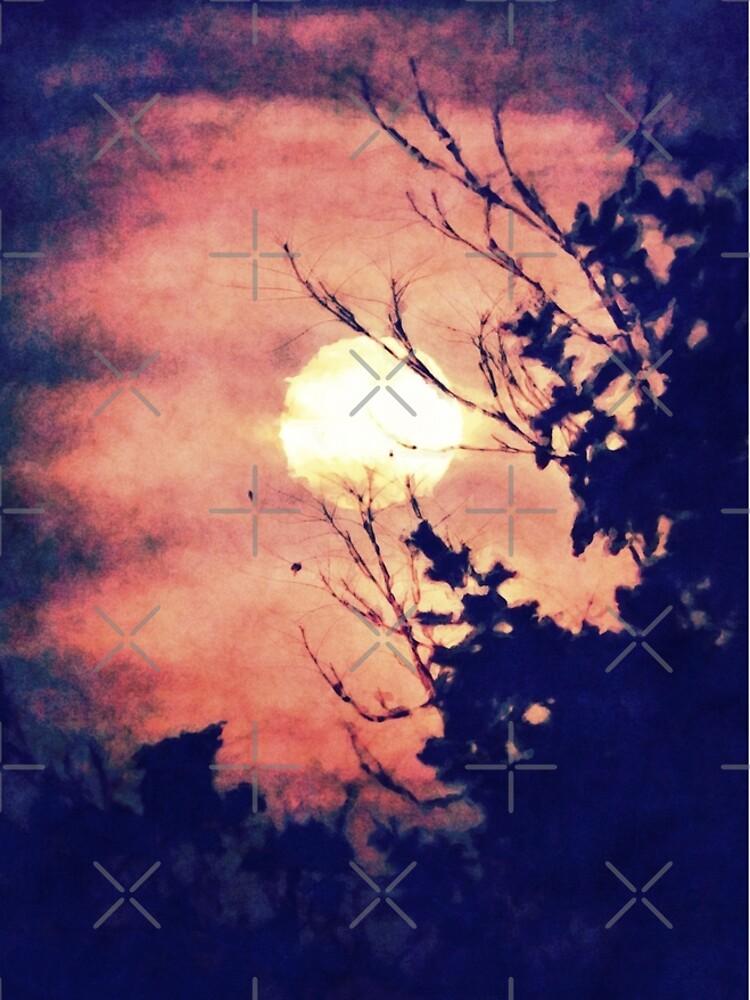 Full Moon Silhouette by perkinsdesigns