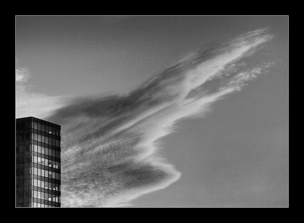 cloud by capice