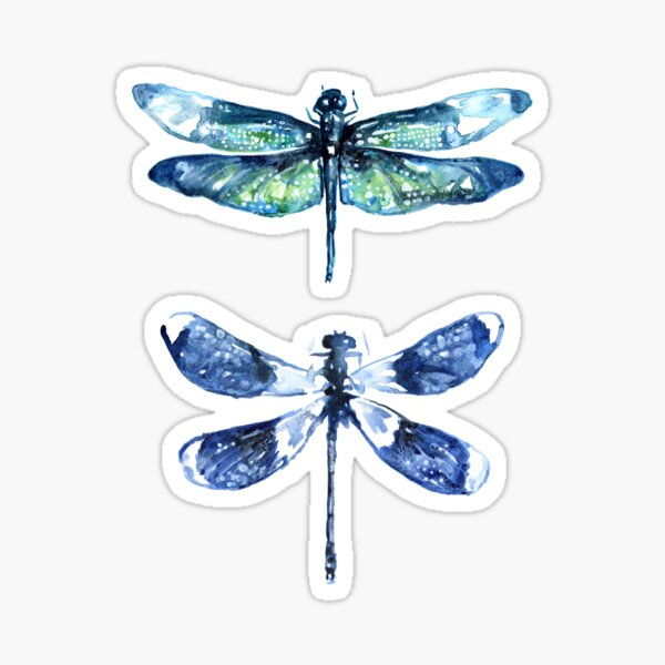 Dragonfly Wings Sticker