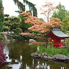 Asian Water Garden by Marjorie Wallace