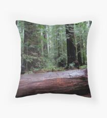humility, awe & respect Throw Pillow