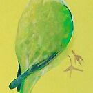 Parakeet by ec-art