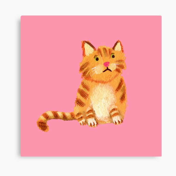 Ginger Cat on pink Canvas Print