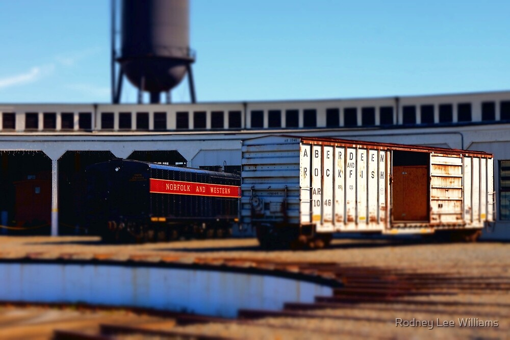 Norfolk and Western by Rodney Williams