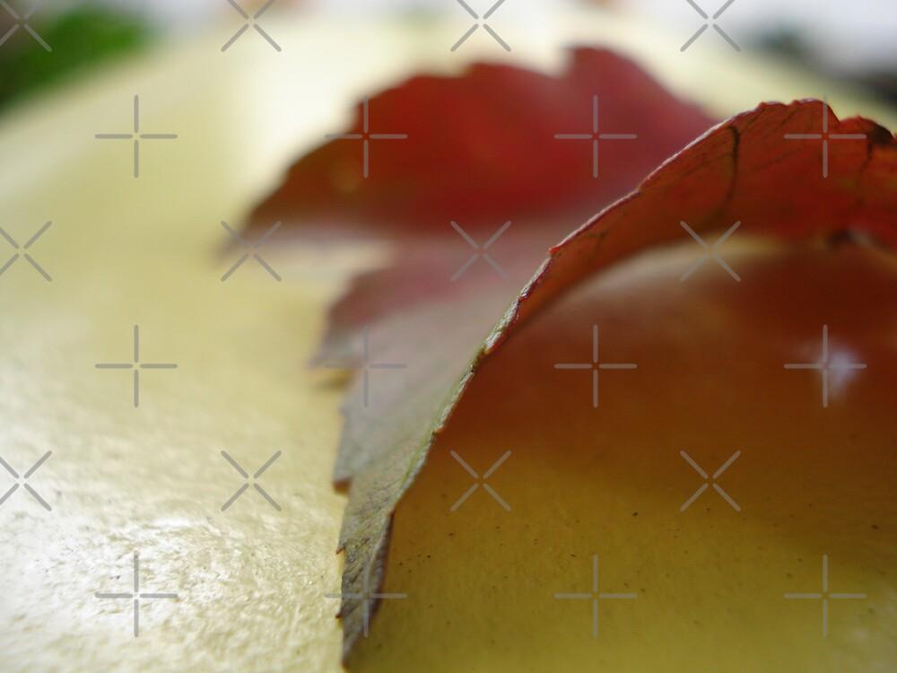 Leaf it as it is by JRobinWhitley