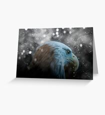 Bald Eagle Snowy Night Greeting Card