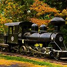 The Train by TJ Baccari Photography
