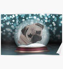 A Snow Globe Pug Poster
