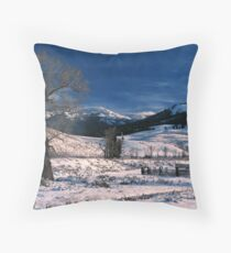 LAMAR VALLEY,WINTER Throw Pillow