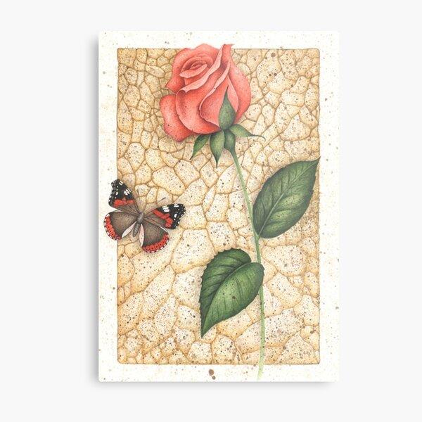 Schmetterling und Rose Metallbild